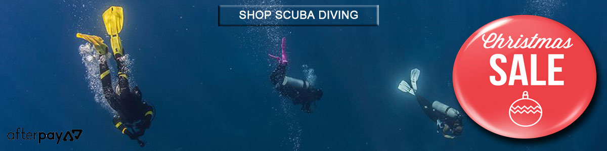 Christmas Scuba Diving Sale