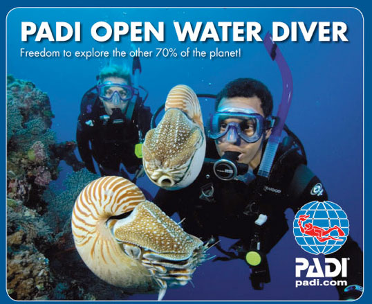 Learn to Dive-Padi Open Water Scuba Course
