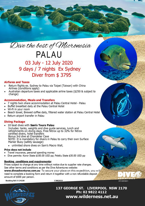 Palau Dive Trip July 2020